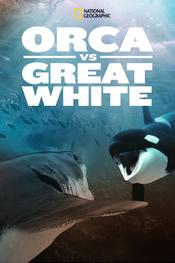 Orca vs. Great White EgyBest ايجي بست