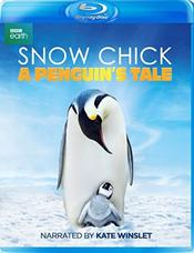 Snow Chick: A Penguin's Tale EgyBest ايجي بست