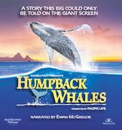 Humpback Whales EgyBest ايجي بست