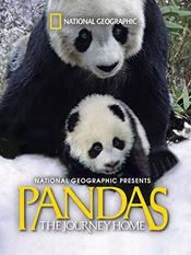 Pandas: The Journey Home EgyBest ايجي بست