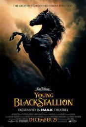 The Young Black Stallion EgyBest ايجي بست