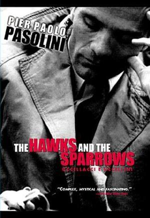 The Hawks and the Sparrows 1966
